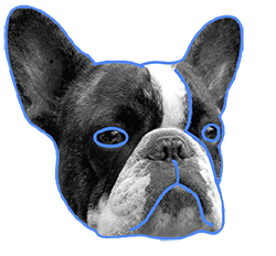 elbulli perro